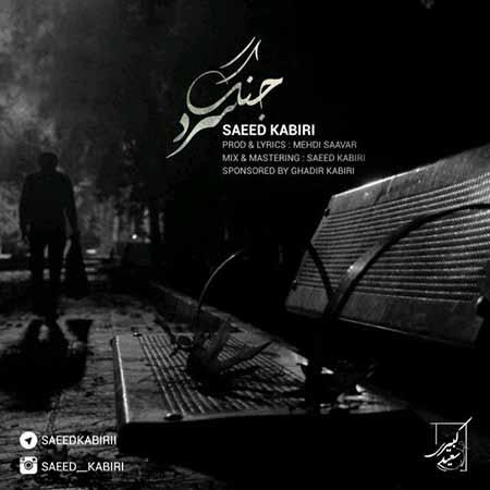 دانلود آهنگ جدید سعید کبیری بنام جنگ سرد