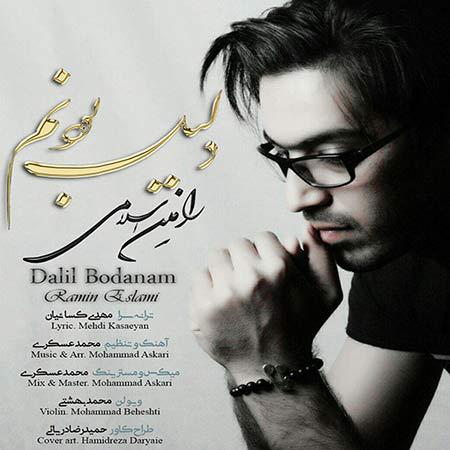 دانلود آهنگ جدید رامین اسلامی به نام دلیل بودنم
