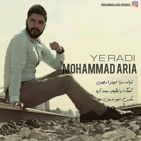 دانلود آهنگ جدید محمد آریا به نام یه ردی