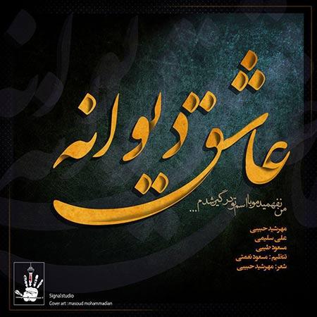 دانلود آهنگ جدید مهرشید حبیبی بنام عاشق دیوانه