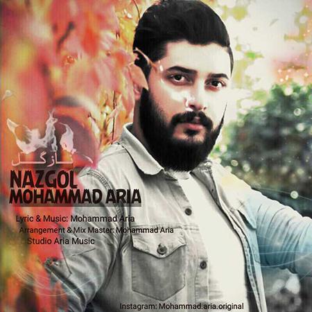 دانلود آهنگ جدید محمد آریا به نام ناز گل